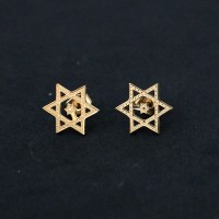 Surgical Steel Earring Gold-plated Star of David