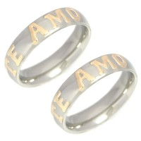 Stainless Steel Alliance par with appliques Te Amo in Gold