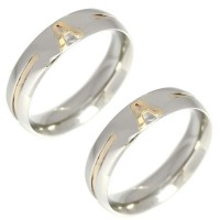Pair of Alliance Stainless Steel 5mm with 1 fillet and 1 letter in gold
