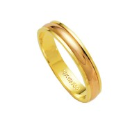 Alliance Gold 18k Gold 750 and Red Width 4.10mm Height 1.50mm