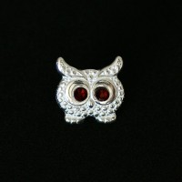 Owl Pendant 925 Silver Bracelet for Moments of Life