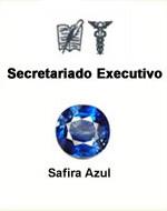 Secretariado Executivo