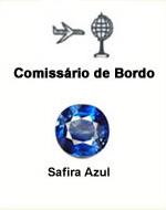 Comissário de Bordo